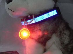 Svítící přívěsek pro psy TN550