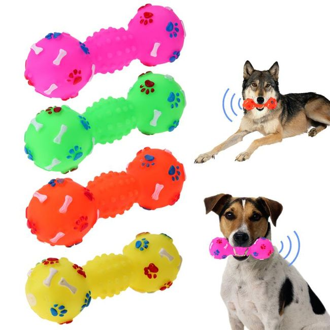 Pískací hračka pro pejsky - 4 barvy 1
