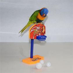 Basketbalový koš pro papoušky