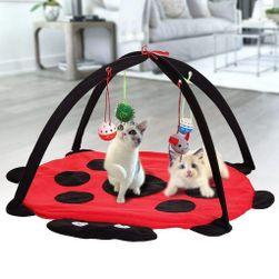 Hrací podložka pro kočky PD_1537099