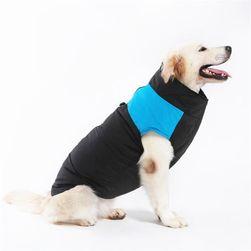 Облекло за кучета AS406