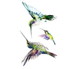 Tymczasowy tatuaż Hummingbird
