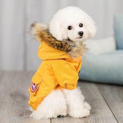 Obleka za pse OP5689 size 4
