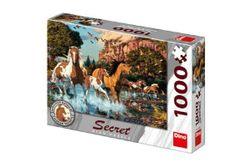 Puzzle Cai, 15 detalii ascunse 1000 piese, 66x47cm în cutie 32x23x7cm RM_21532649