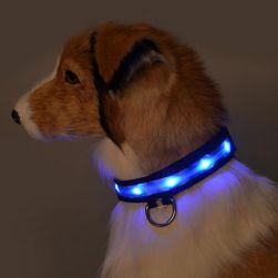 Светящийся ошейник для собак- 5 расцветок