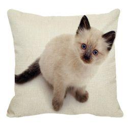 Párnahuzat sziámi macskával - 23 változat