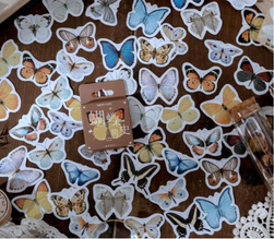 Sticker set Butterfly