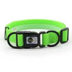 Ogrlica za pse B010440