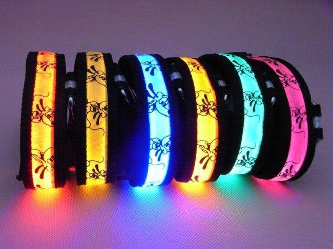 Svítící LED obojek pro domácí mazlíčky - na výběr z 5 barev 1
