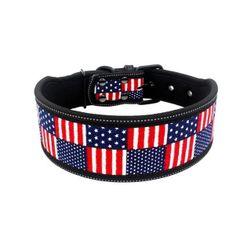 Ogrlica za pse B06780