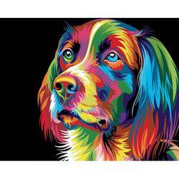 Malování podle čísel - barevný pes