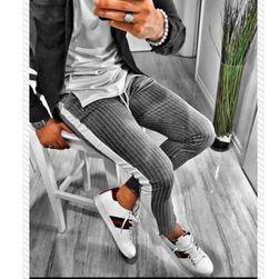 Мужские брюки Alex