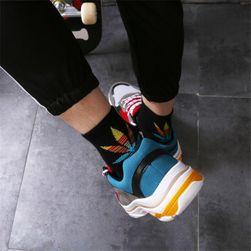 Pánské ponožky MS55