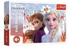Puzzle Ledové království II/Frozen II 60 dílků 33x22cm v krabici 21x14x4cm RM_89117333