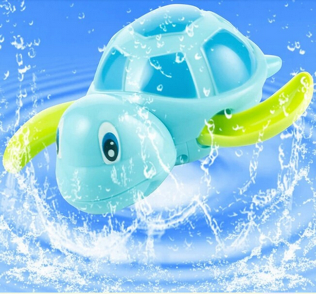 Teknős a vízben 1
