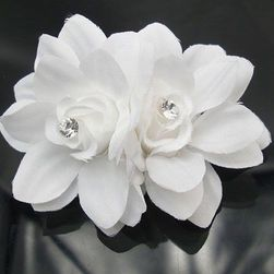 Orchidea vagy hajcsat