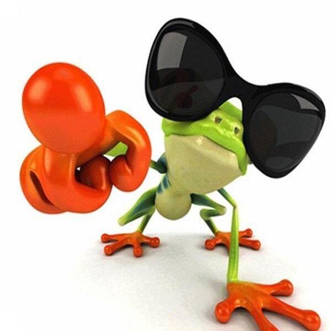 Wesoła naklejka 3D z motywem żaby - różne warianty 1