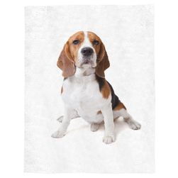 Blanket Beagle