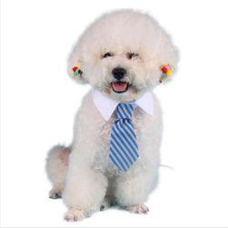 Límeček pro psy - kravata
