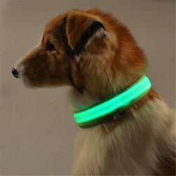 Világító LED nyakörv
