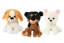 Câine de pluș RM_56780227