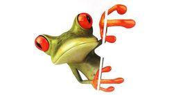Naklejka 3D na auto - żaba