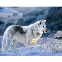 5D obraz s bílým vlkem