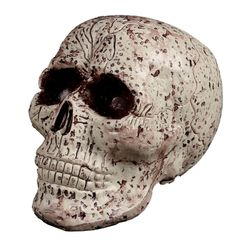Strašidelná lebka