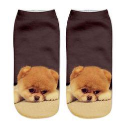 Čarape sa psima - 9 varijanti