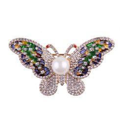 Detailní motýlí brož
