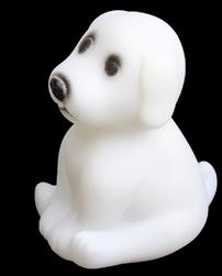 LED pas koji menja boju