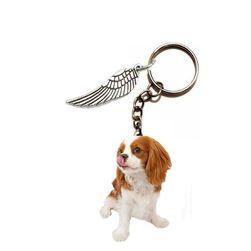 Privezak za ključeve So41