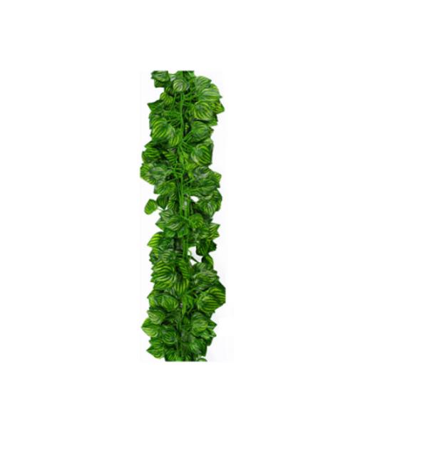 Umělé popínavé rostliny 1