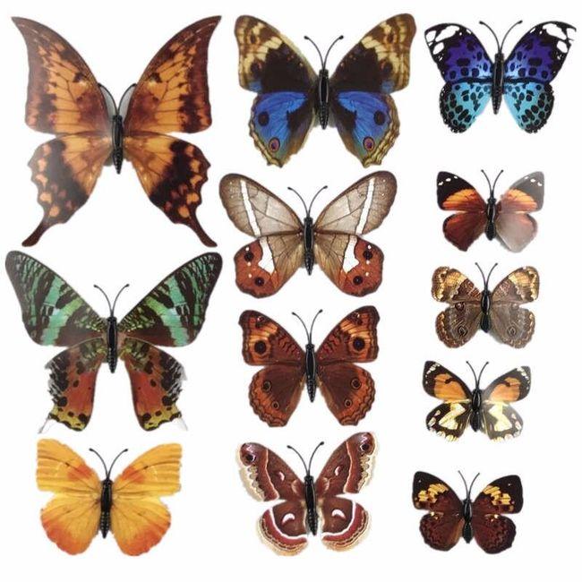 3D lepljivi metulji - 25 variant 1